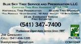 Expert Palm Tree Pruning, planting and moving even the Big and Tallest of Palm trees. Jim is a Certified Arborist.  Blue Sky can also order Palms from Hooked On Palms so give them a call at 541-347-7400 for all your palm needs.